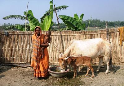 Livestock_Women